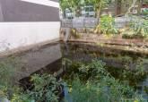 Visita y extracción de muestra de agua del solar del Paseo Alfonso XIII