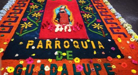 Parroquia de Guadalupe ganó mejor alfombra de La Pasada