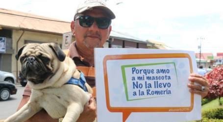 Municipalidad de Cartago busca contribuir con el bienestar animal