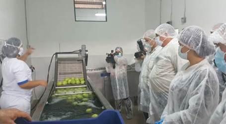 Chayoteros estrenan nueva planta de procesamiento en Cartago