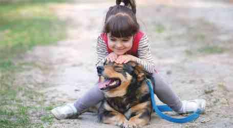 En el 2017, 37 niñas y niños  requirieron internamiento hospitalario por mordeduras de perro