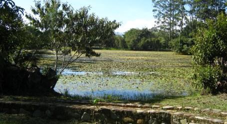 Parque Laguna de doña Ana cerrará por remodelación