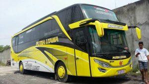 putra-utama-bus