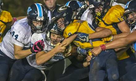Cloudland uses strong second quarter to power past 'Dogs