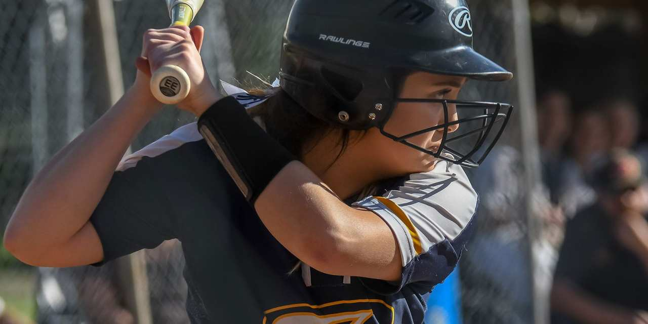 Friday Round-up: Lady 'Landers hold off HV
