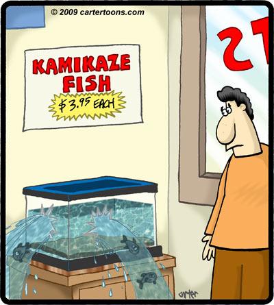 kamakaze_fish