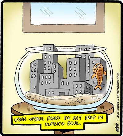 urbanfishbowl
