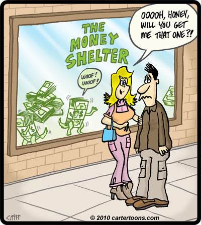 MoneyShelter
