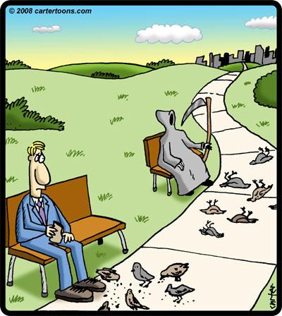 death_birds