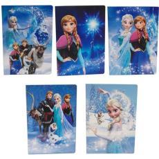 Quaderni Frozen Regno di Ghiaccio