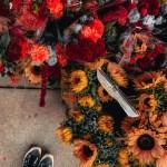 5 Motivi per venire a New York d'autunno