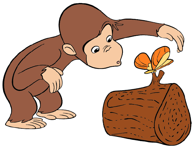 Image result for curious george