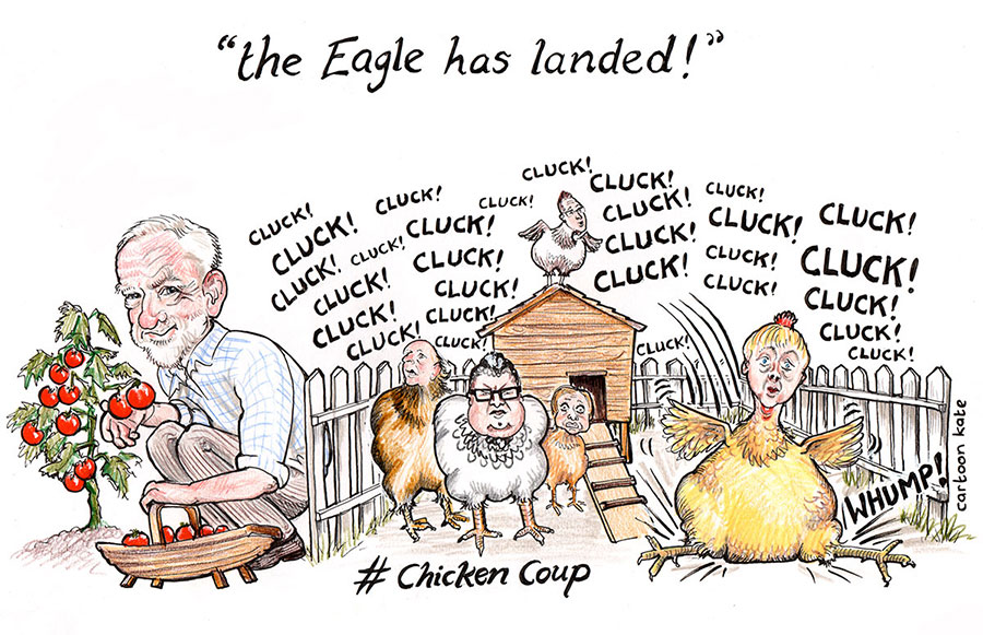Chickencoup900