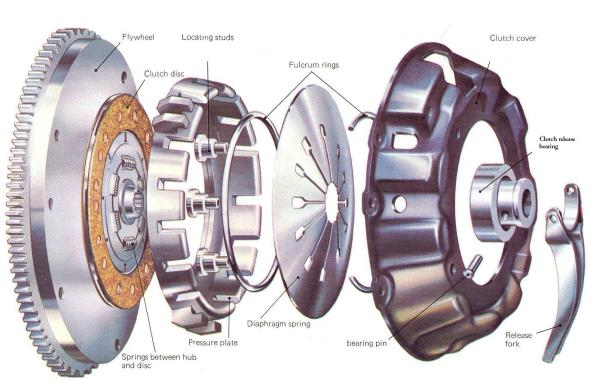 Clutch-plate-photo