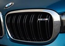 2015 BMW X6 M High Performance Crossover 9
