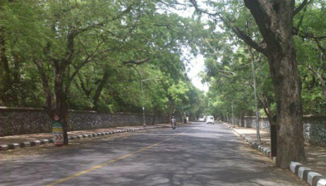 Besant-Avenue-Road