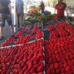 Arts District Farmers Market Grand Opening June 19