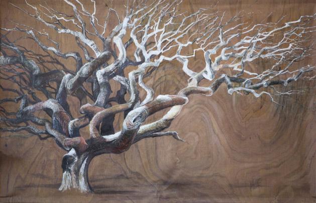 """Petrified Tree"" by Maria Greenshields-Ziman"