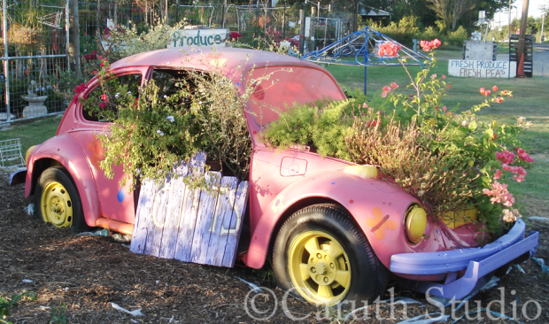 Planted VW bug