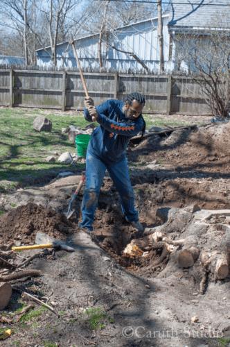 Narvas chops away at tree roots