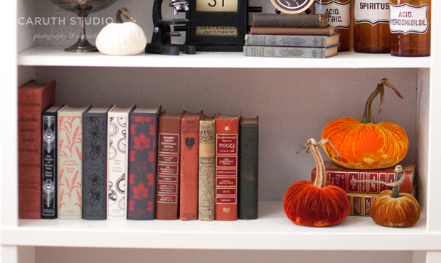 Bottom Halloween shelf with books and velvet pumpkins