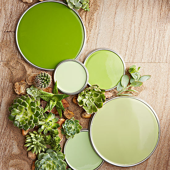 Green color pallet with succulents on a wood table