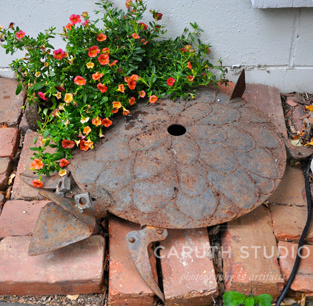 Turtle assemblage with flowers