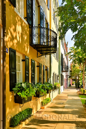 Growing up in Charleston, Rainbow Row has been a part of my life as long as I can remember.   I've taken photos of it over the years, but just starting to really appreciate it.