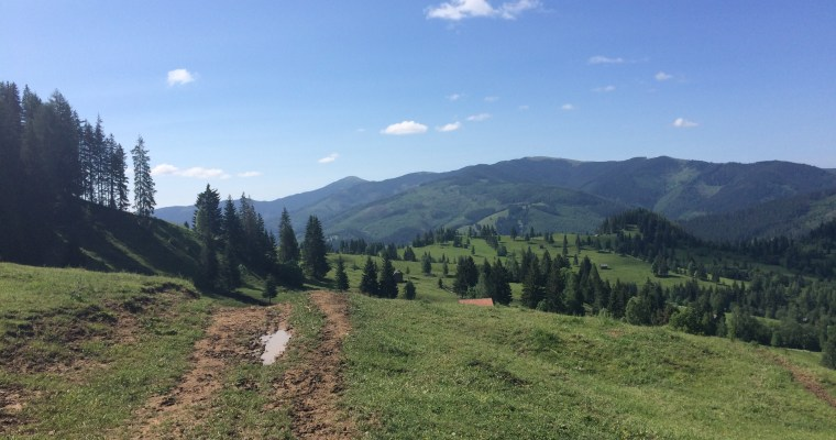 My first ultramarathon adventure: 100km in the Carpathian mountains