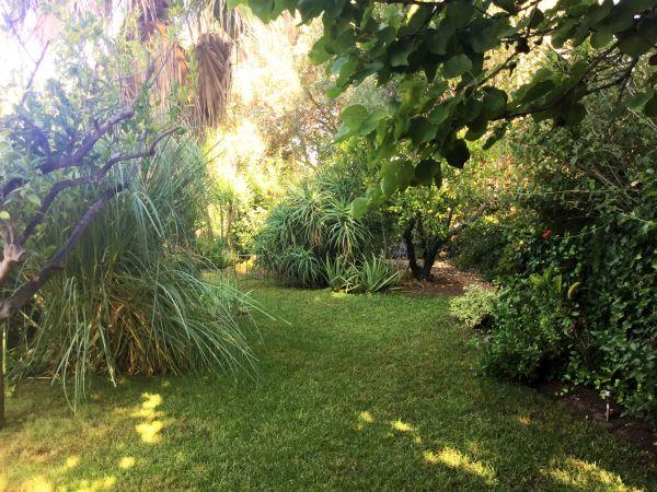 De tuin van Casa Amigo
