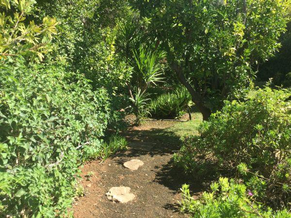 Het tuin van Casa Amigo