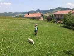 Taddeo e Luce nel campo