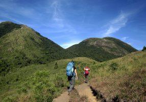 pico-parana-trekking (19)