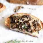 roasted mushroom tartine with fontina cheese