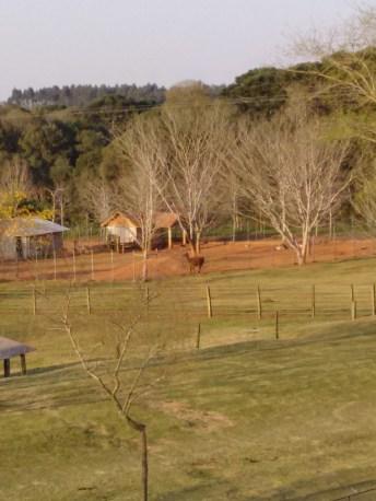 BR 277 no Paraná Anila Restaurante