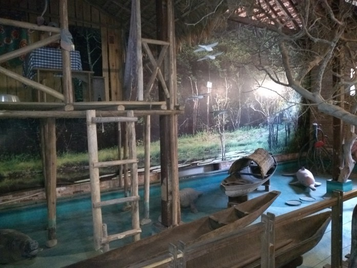 Museu Nacional do Mar Sala Amazônia