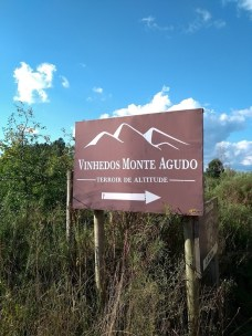 Vinhedos do Monte Agudo