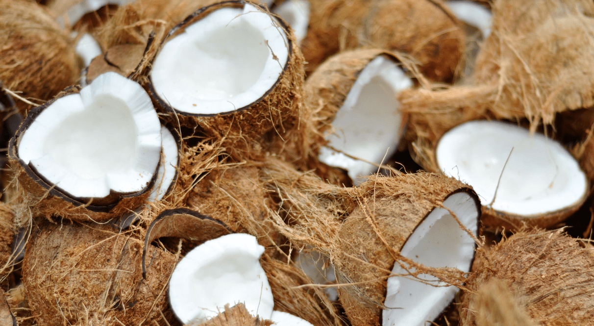 Everything You Need To Know About Coconut foto