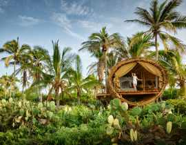 playa viva treehouse