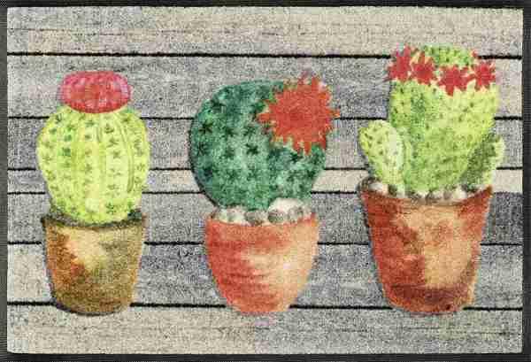 Tappeto Wash+dry Kleen-tex  Jardin de Cactus cm.50x75