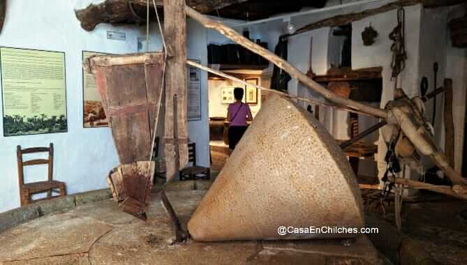 La almazara de Benagalbón, Oleoturismo en la Axarquia