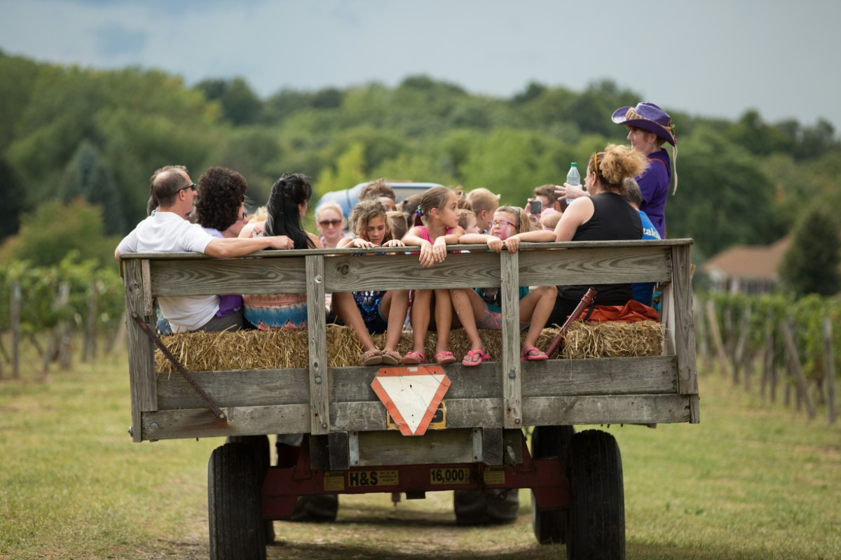 Hay ride, Purple Foot Festival at Casa Larga Vineyards