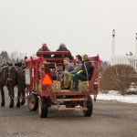 Horse and Carriage at NY Ice Wine & Culinary Festival at Casa Larga Vineyards