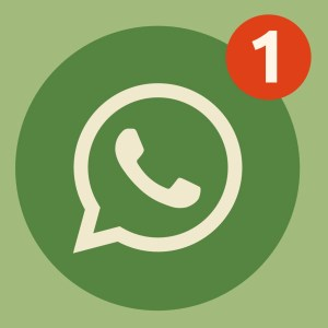 Truffa whatsapp borsa Hermès
