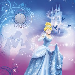 4-407 Cinderella´s Night