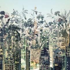 8-979 Urban Jungle