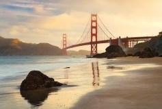 XXL 4-054 Golden Gate