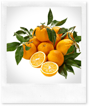 Naturasì: 1 kg. di arance biologiche in omaggio