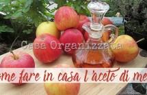 Come autoprodurre in casa l'aceto di mele