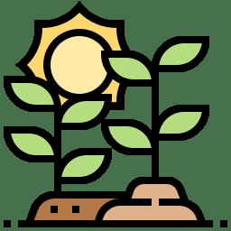 Regulatori de creștere
